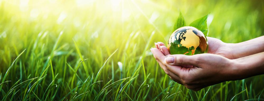 zielona planeta w dloniach a w tle trawa